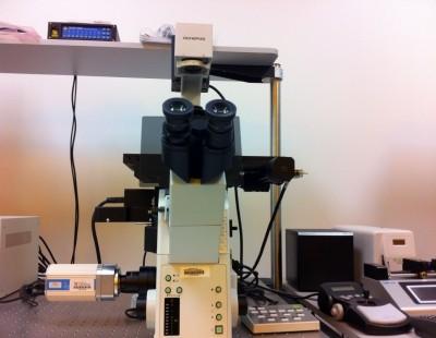 Olympus  IX81-ZDC2 Focus Drift Compensating Inverted Microscope