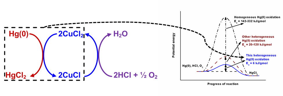 Hg(0) oxidation over CuCl2